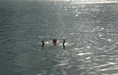 Lake Eacham Tourist Park, Australia